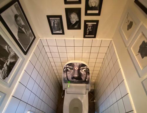 トイレも内装の一部のように(和風トイレ→洋風トイレに取替)